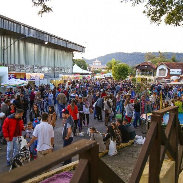 Novidades marcam a 19ª edição da Festa das Cucas