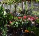 Floricultura Wendland